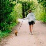 mujer-paseando-perro