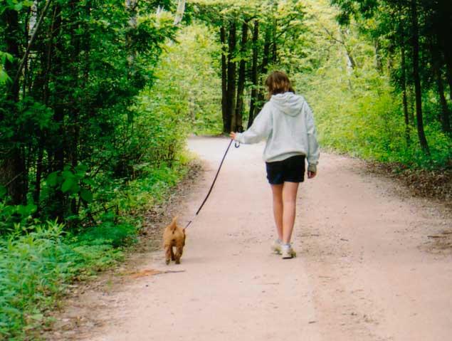 Paseando al perro por el lago - 2 4