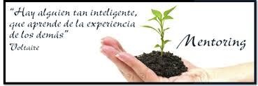 mentoring_plantita